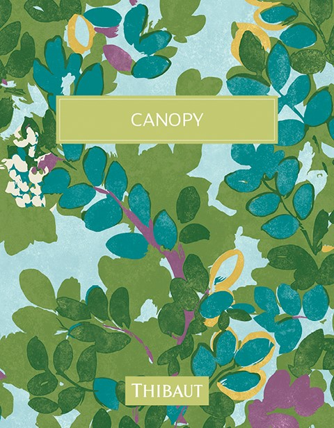 Cover phtoo for Canopy collection