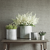 Cover photo for collection Solid and Textured Plain Wallpaper