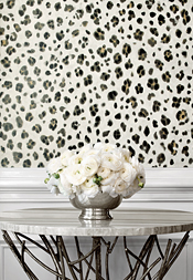 Panthera from Bridgehampton Collection
