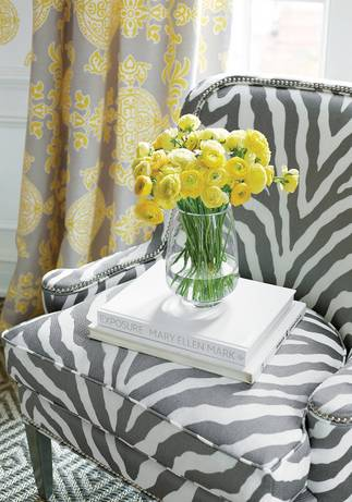 Thibaut Design Etosha Embroidery in Enchantment