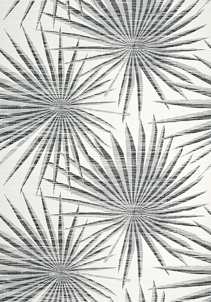 Palm Frond Black And White T10145 Collection Tropics From
