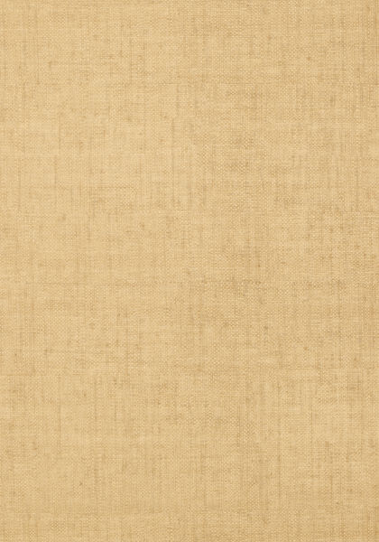 Bankun Raffia Camel T14147 Collection Texture Resource