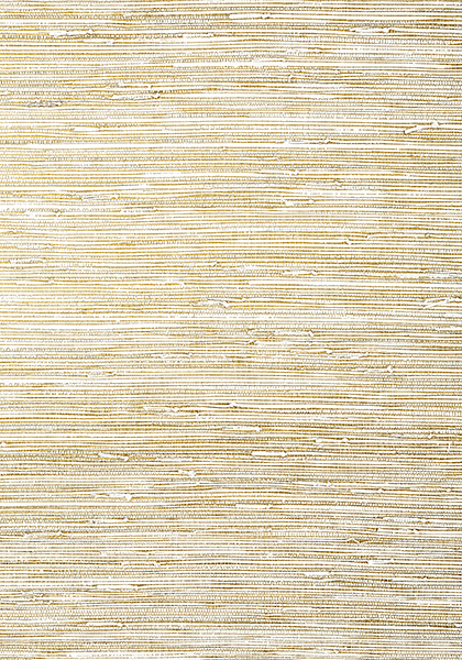 Sutton Metallic Gold And White T24059 Collection Grasscloth Resource 5 From Thibaut
