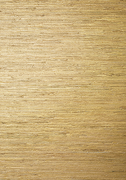 Sutton Metallic Gold T24062 Collection Grasscloth Resource 5 From Thibaut