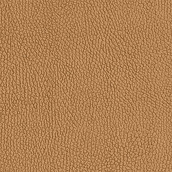 Montana Leather Camel T3082 Collection Texture Resource