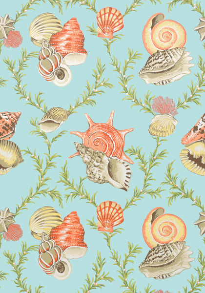 Sumba Shell Sky Blue T5746 Collection Biscayne From Thibaut